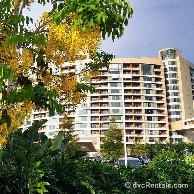 Bay Lake Tower At Disney S Contemporary Resort Dvc Rentals