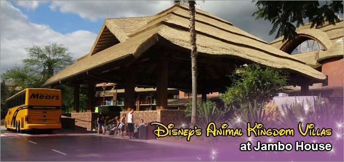 Disney S Animal Kingdom Villas At Jambo House Dvc Rentals